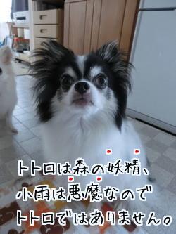 2016-09-05-02.jpg