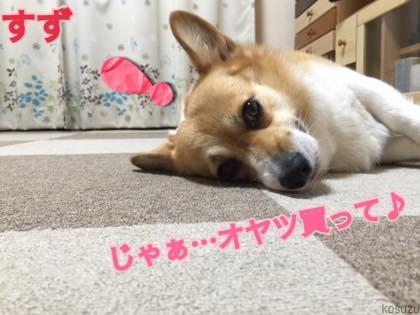 th_IMG_5508.jpg