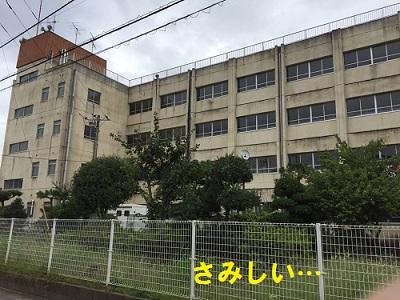 201610061.jpg