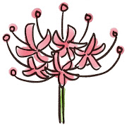 flower_higanbana.jpg