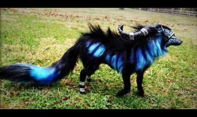 criaturas_fantasticas2.jpg