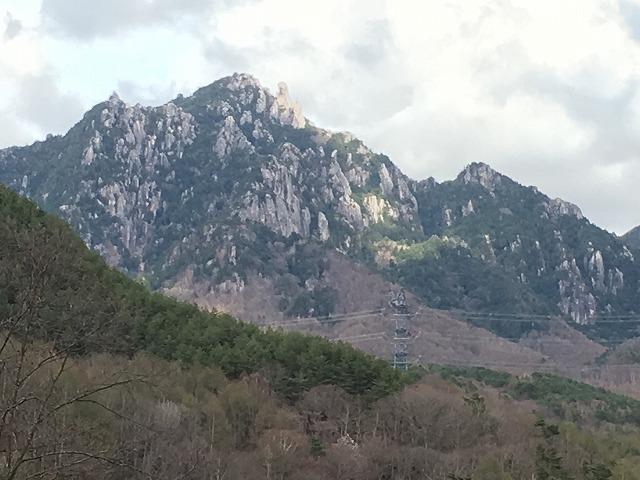IMG_3705●瑞牆山荘への林道から見た瑞牆山.jpg