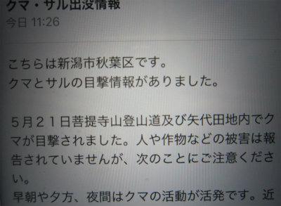縮IMG_4673 no2