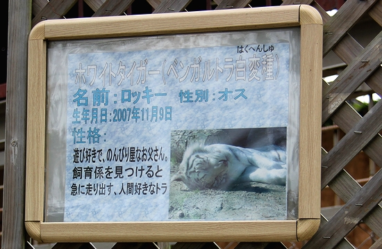 東武動物公園_30