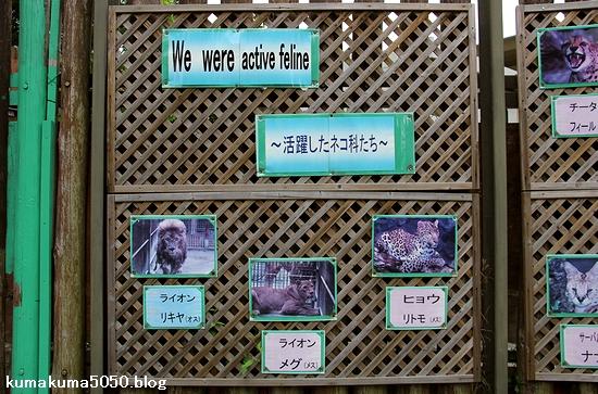 東武動物公園_32