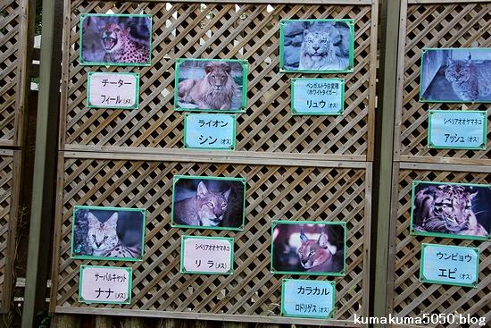 東武動物公園_33