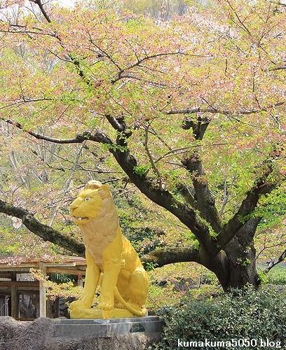 東山動植物園_5