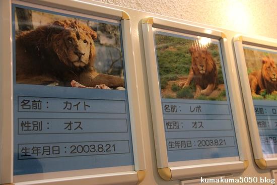 多摩動物公園_20