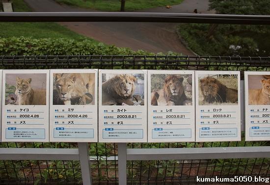 多摩動物公園_26