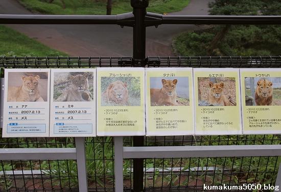 多摩動物公園_27