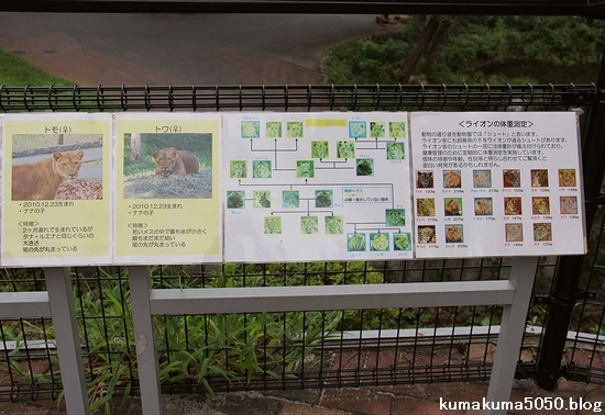 多摩動物公園_28