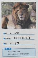 多摩動物公園_34