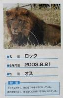 多摩動物公園_35