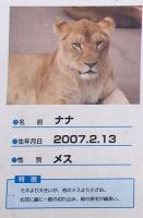多摩動物公園_36