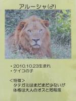 多摩動物公園_38