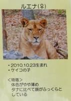 多摩動物公園_40