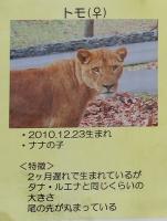 多摩動物公園_42