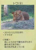 多摩動物公園_43