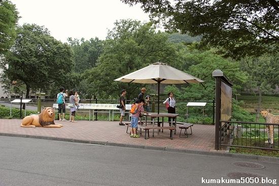 多摩動物公園_45