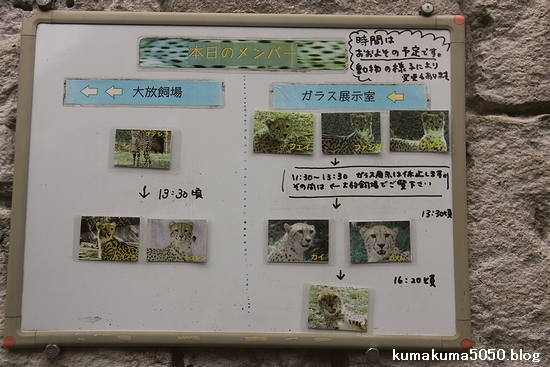 多摩動物公園_47