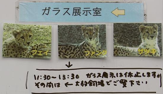 多摩動物公園_48