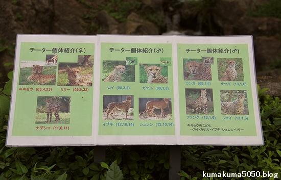 多摩動物公園_52