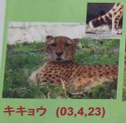 多摩動物公園_53
