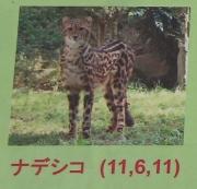 多摩動物公園_55