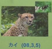 多摩動物公園_56