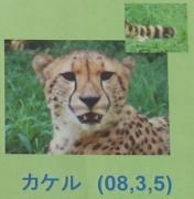 多摩動物公園_57