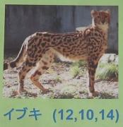 多摩動物公園_58