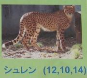 多摩動物公園_59