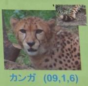 多摩動物公園_60