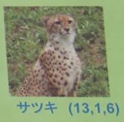 多摩動物公園_61