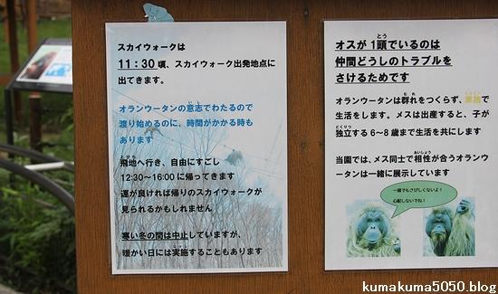 多摩動物公園_72