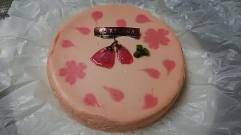 レジーナ桜チーズケーキ (3)