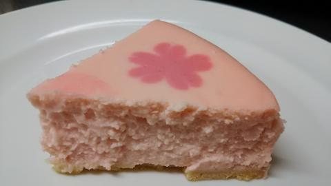 レジーナ桜チーズケーキ (5)