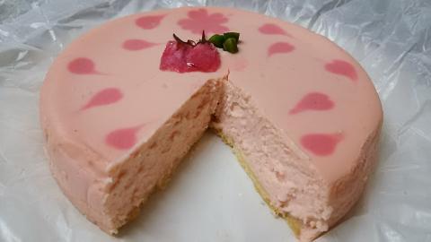 レジーナ桜チーズケーキ (6)