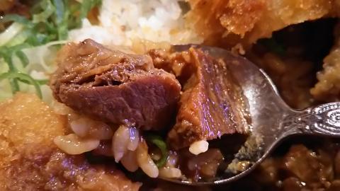 刈谷PAどてかつ丼 (5)