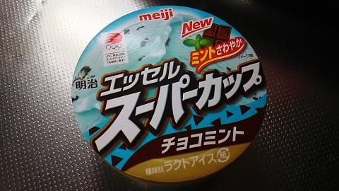 スーパーカップチョコミント (1)