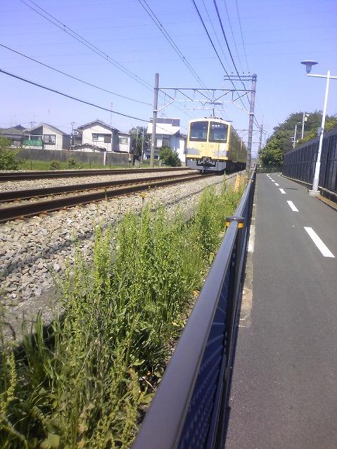 TS3J0337.jpg