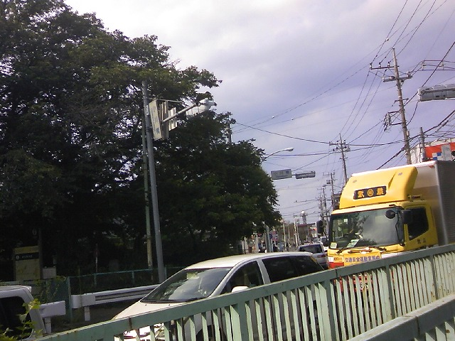 TS3J0548.jpg