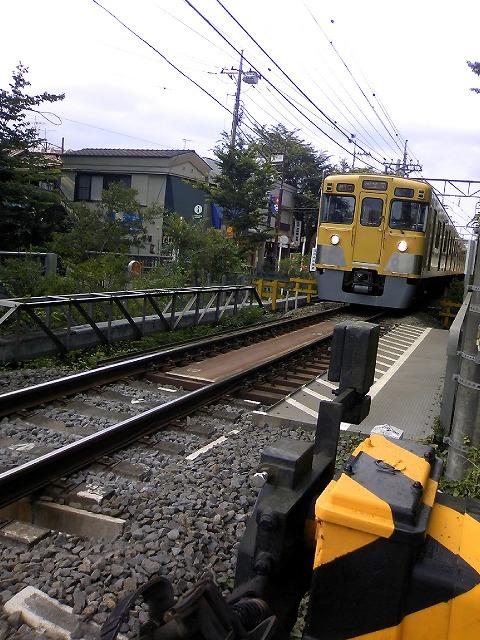 TS3J0550.jpg