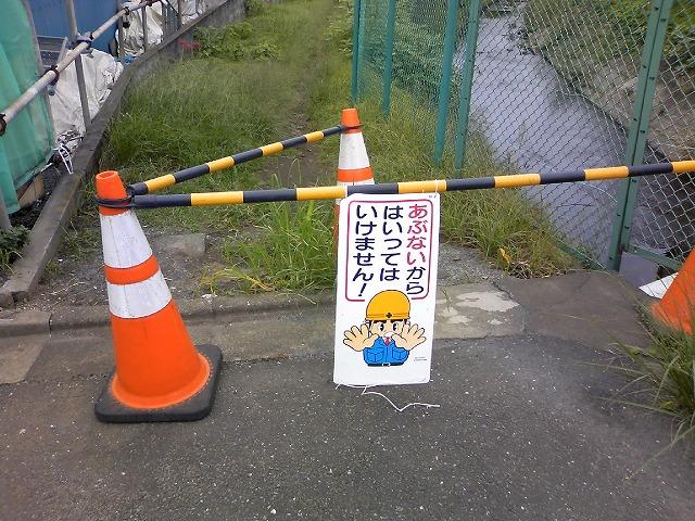 TS3J0703.jpg