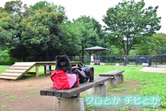 540px20160803_FUGA-02.jpg