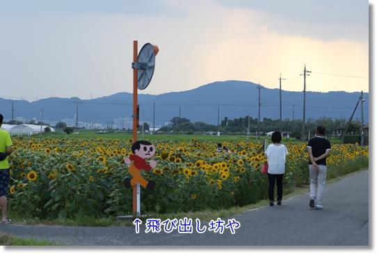 3V9A6666.jpg