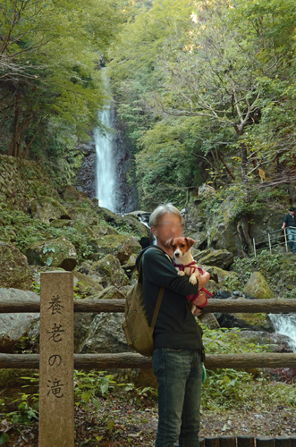 2016-10-15-養老の滝-1030