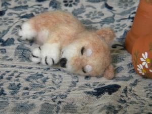 柴子犬お昼寝1