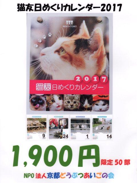 猫友日めくりカレンダー2017-POP