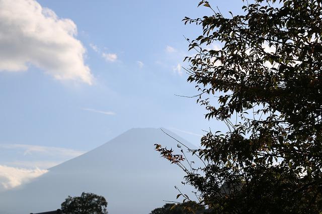 忍野八海から富士山1